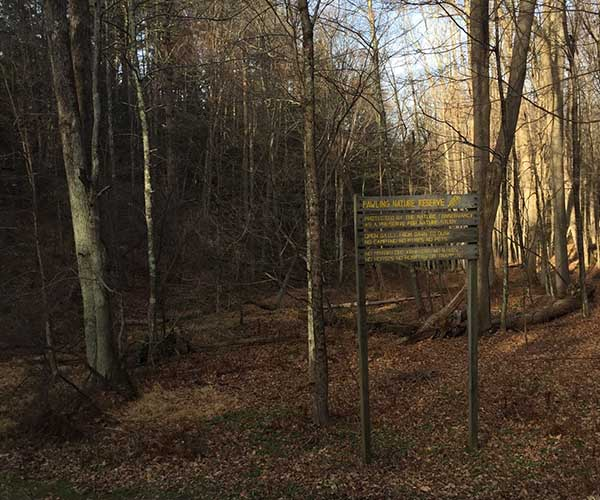 Sign in woods